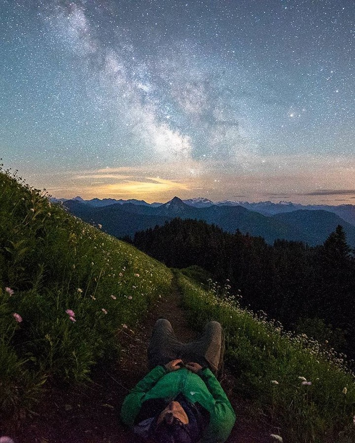REPOST: @joelschat to be featured! Tag a friend who might enjoy this photo and this milky way journey!  From Joel about this image: I was up on the ridge in Washington Back Country near Steven's Peak shooting and wasn't happy with what I was getting so I walked back to find a new spot and stumbled on this one and fell in love and couldn't move for hours.  Original Post:  My favourite thing about being a photographer is being able to look back through my photos and remember moments that I would have otherwise forgotten about