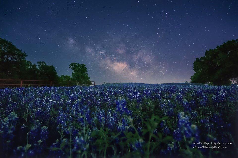 Rajesh Jyothiswaran in Ennis, Texas....